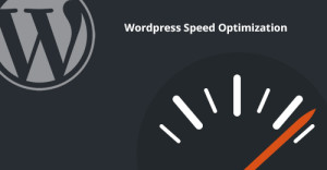 Easy Tips to Speed Up WordPress Website